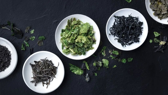 Omega 3 Vegan VitaminCompany: la migliore fonte vegetale di EPA e DHA