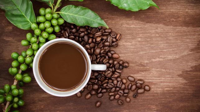 bevande all estratto di caffè verde