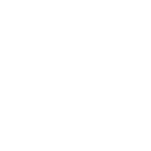 Paga con Bonifico